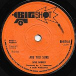 Are You Sure / I Dont Know Why - Dave Barker