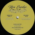 Black Iration / Jah Is Watching You / Rootskanking / Rootskanking Dub - Kenny Knotts / Rootsmala / Aratz / BDF