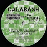 Ethiopia Set The Golden Rule / Golden Rule Dub / Lost Roots / Stand Strong Dub - Luciano Feat Dixie Peach / The Disciples