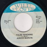 False Teaching / Teachers Dub - Junior Murvin