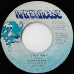 Hell In A Town / Ver - Wayne Palmer