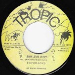 Jah Jah Why / Soulful Lover Baby - Floyd Lloyd