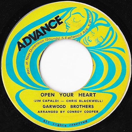 Lion Vibes Sound And Music Reggae Vinyl Records