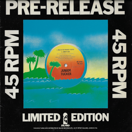 81edcd765db12 Lionvibes Sound and Music - Reggae Vinyl Records