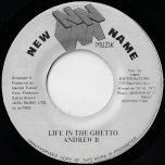 Life In The Ghetto / Ver - Andrew B