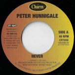 Never / PA Mix - Peter Hunnigale