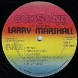 Presenting - Larry Marshall