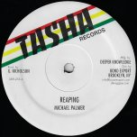 Reaping / Dub / Acting So Strange / Dub - Michael Palmer / Frankie Jones