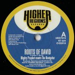 Roots Of David / Roots Of Dub - Mighty Prophet Meets The Navigator