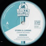 Storm Is Coming / Ver / Righteous One / Ver - Junior Delgado / Michael Buckley