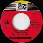 Taking It Slow / Vibe Mix - Wayne Wonder