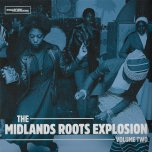 The Midlands Roots Explosion Volume Two - Various..Steel Pulse..Musical Youth..Mystic Foundation..Black Symbol