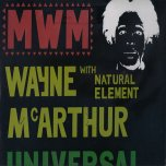 Universal Harmony - Wayne McArthur with Natural Element