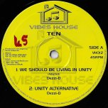 Fire In Their Souls / Chant Against The Wicked / We Should Be Living In Unity / Unity Alternative - Brushy One String / Dezzi D