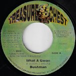What A Gwan / Reflection Ver - Bushman / Dalton Browne