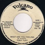What Are You Feeling - Tony Tuff