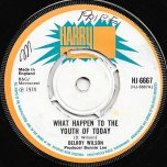 What Happen To The Youth Of Today / Baby Dont Do It - Delroy Wilson