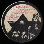 What You Dont Know / Another One Bite The Dust / Jah Thomas And Life In Dub - Barry Brown / Ranking Joe