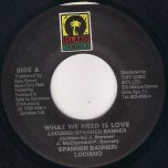 What We Need Is Love - Luciano and Spanna Banner