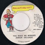 You Make Me Wonder - Junior Delgado